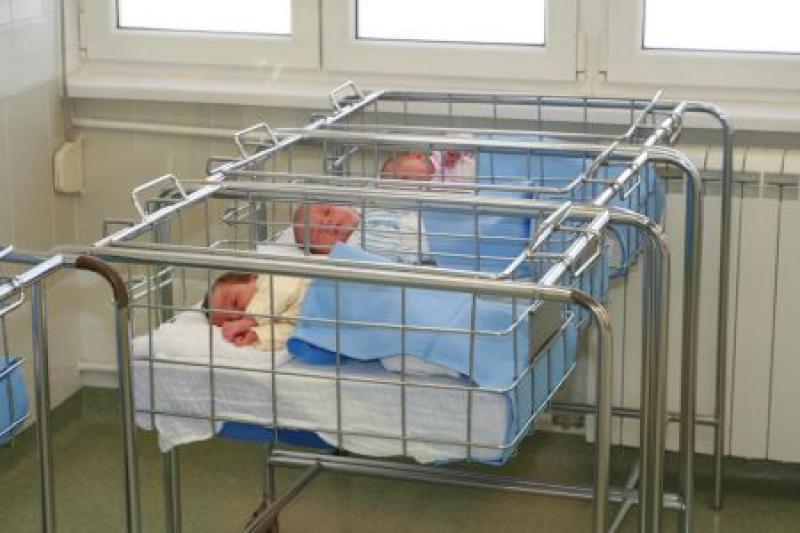 Rođene tri bebe